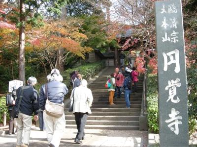 北鎌倉もみじ狩り日帰りツアー きものの喜2009 12/7(月)