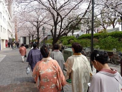 移動中も桜がきれい